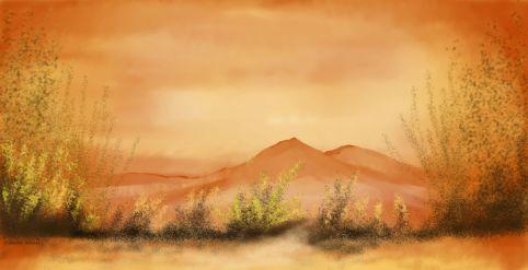O_Southwestern Desert