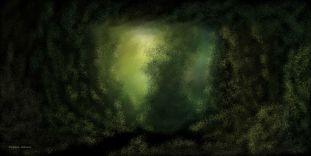 O_Misty Forest