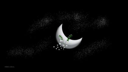 O_Moon, Stars and Plant Life_Digital_3-9-2012