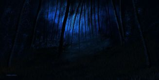 O_Moonlit Forest