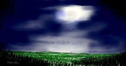 O_Moonlit Night