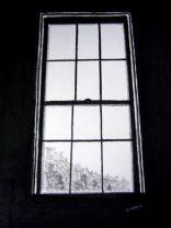 P_Window's Peek