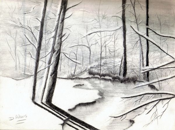 L_Woods in the Winter