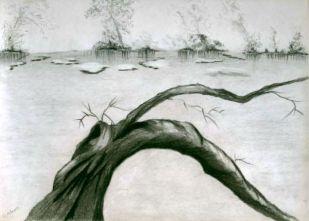 L_Tree Limb