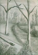P_Trees Along Path