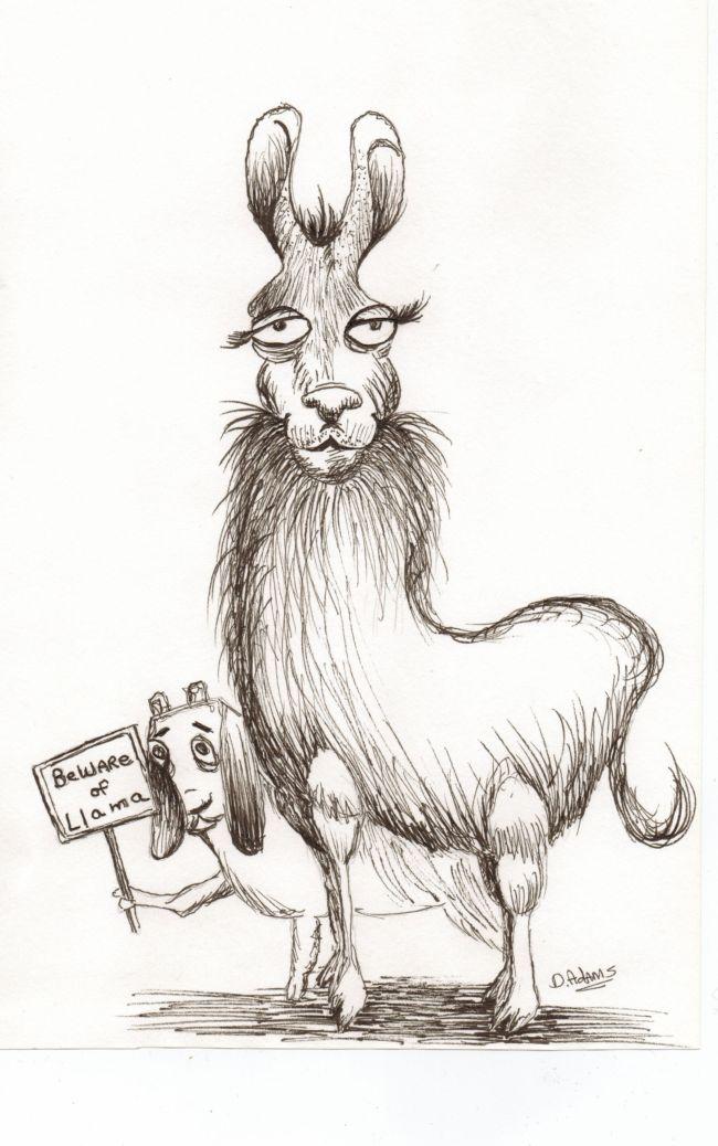 Pen and Ink: Llama Cartoons | Adamsart