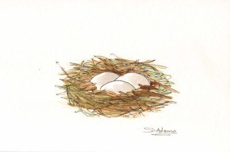 L_Birds Nest