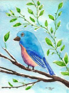 P_Bluebird