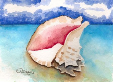 L_Conch Shell