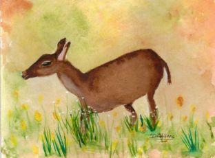 L_Deer Me