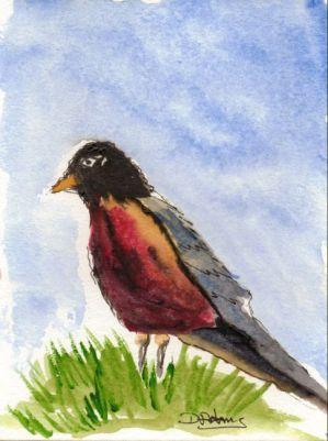 P_Eurasian Bullfinch