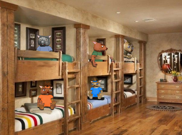six-bunk-beds-dink-tink-cookie-Shadow-Chewy