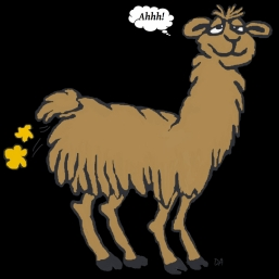 llama-brown-farting-ahhh-black-background-2012-12-05