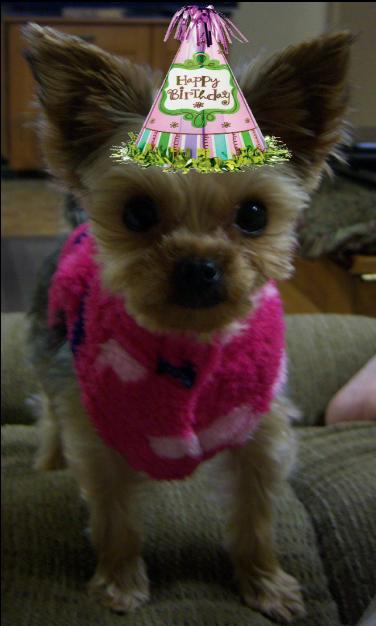 Cici Birthday age 2