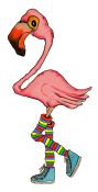 Flamingo2-designs
