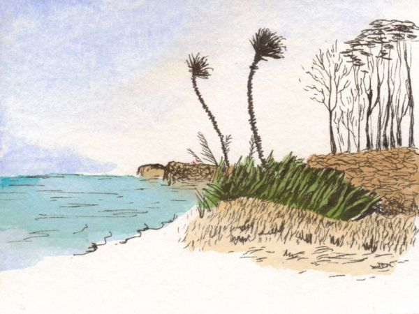 Coastal Breeze-ink-watercolor-5x7-dja-7-3-2011 - Copy