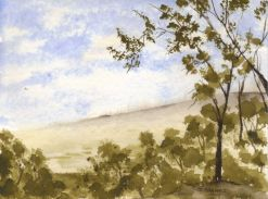 Nature Scene_watercolors_9-25-2012 - Copy