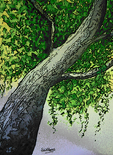 Tree-watercolors-cartoonized