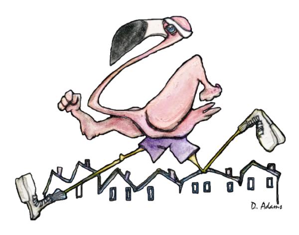 Athletic Flamingo - Copy