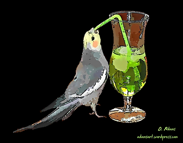 happy_hour_bird_drinking_adamsasrt.wordpress