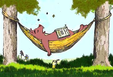 wombie-winky-asleep-hammock-2014-03-14