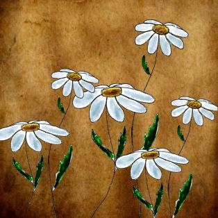 daisies-background 1 - Copy