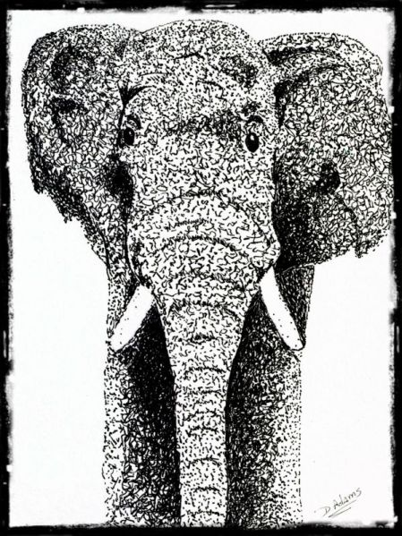 elephant-2014-04-21-bg-cb - Copy