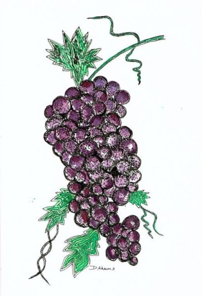 grapes-watercolors-2014-09-22
