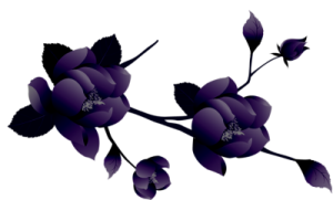 transparent_painted_large_purple_flower_clipsrt-5-2