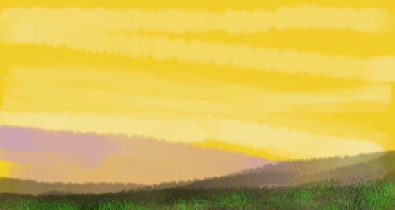 Sunet meadow.-800