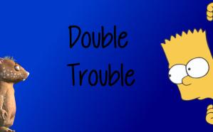 fraz-wombania-burt-simpsons-double-trouble-2
