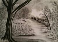 landscape-Nature-Path