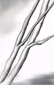 tree-700